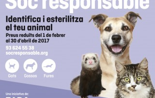 FAADA-socresponsable-20minutos_2016_CAT