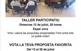 TALLER PRESSUPOSTOS PARTICIPATIUS 2017